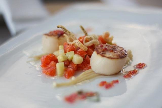 Manly Autumn Menu Feature: ocean trout tartare & seared scallops
