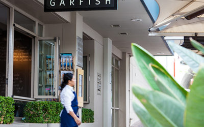 What's new at Garfish Kirribilli?