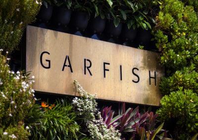 Garfish Manly