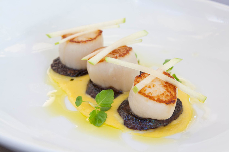 Seared Scallops: video feature from the Kirribilli summer menu