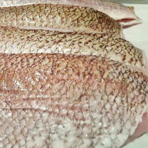kirribilli-searfood-restaurant-gold-band-snapper